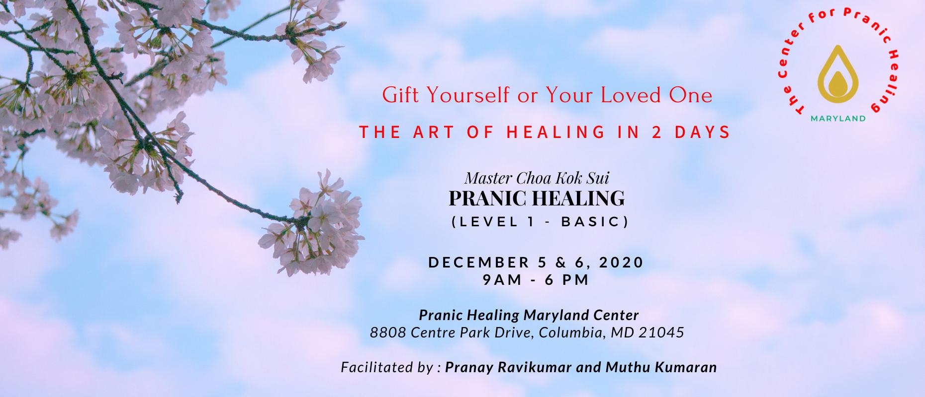 Pranic Healing Level 1 Course